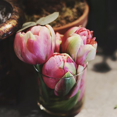 Photographie : Gaëlle Simon Photographie Lieu : Julie Guittard Fleuriste ©Hello Wooly 2015
